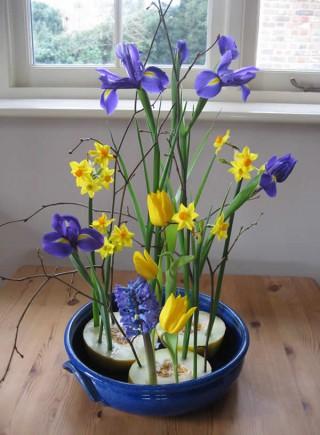 spring-flowers display
