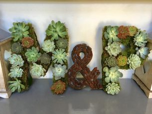 Floral initials decorated with succulant plants and pine cones - Driftwood Flowers, Chichester