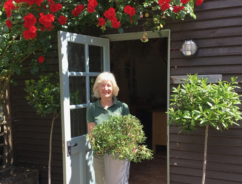 Florist Sarah Newman, owner of Driftwood Flowers Chichester